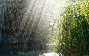 بیشترین میزان بارش ها در سال زراعي جاري در شهرستان پاوه ثبت شد