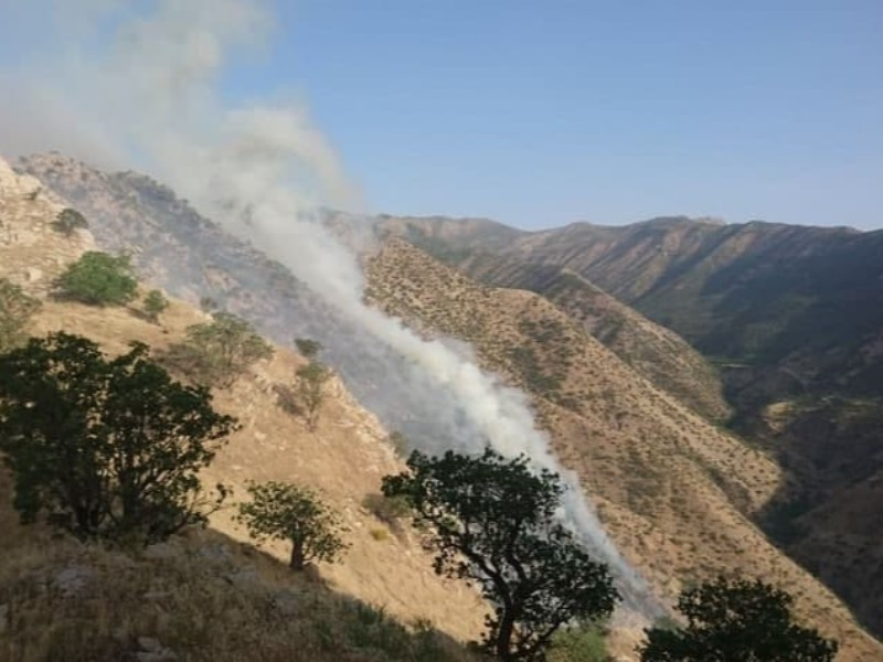 آتش سوزی در منطقه حفاظت شده مرخیل مهار شد