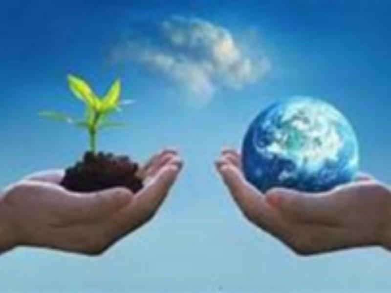 اخگر زاده: نحوه مراقبت صحیح از محیط زیست بعنوان یک امانت الهی است