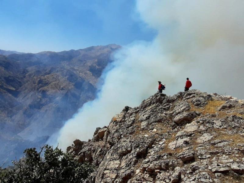 هشدار اداره منابع طبیعی و آبخیزداری در باره خطر آتش سوزی جنگلها و مراتع در پی افزایش دما در روزهای آتی